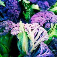 Фиолетовые овощи