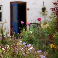 Палисадник служит приглашением в сад